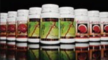 GanoCafe Supplements